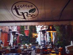 2007255 restaurant coffee tree
